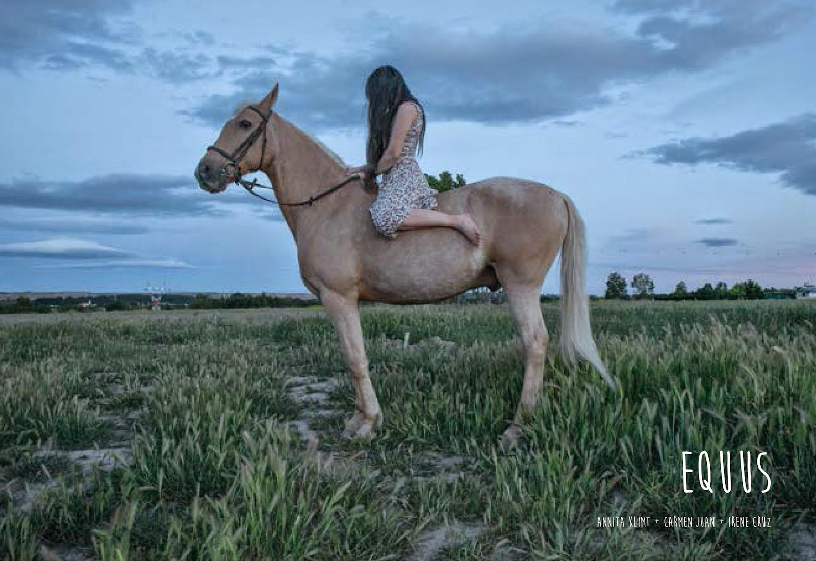 """Libro-foto """"Equus"""""""