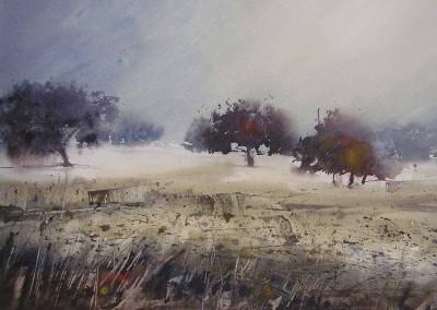 Nemesio Rubio - Niebla