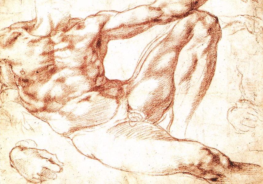 Estudio de Adán - Miguel Ángel